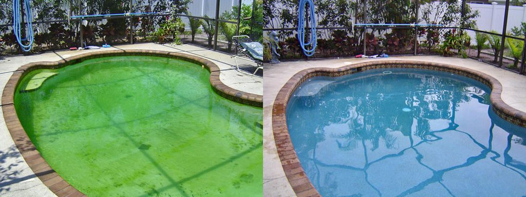 Before and after comparison of green algae pool to beautiful new finish