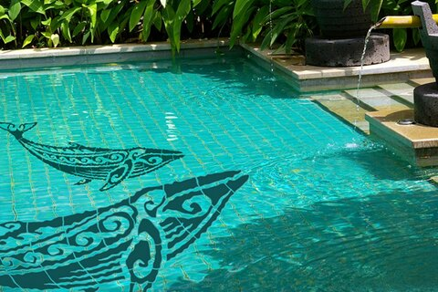 Whael Mosaics in pool